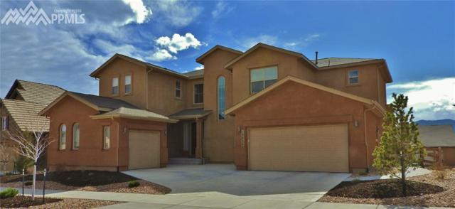 13230 Lions Peak Way, Colorado Springs, CO 80921 (#1882321) :: Action Team Realty