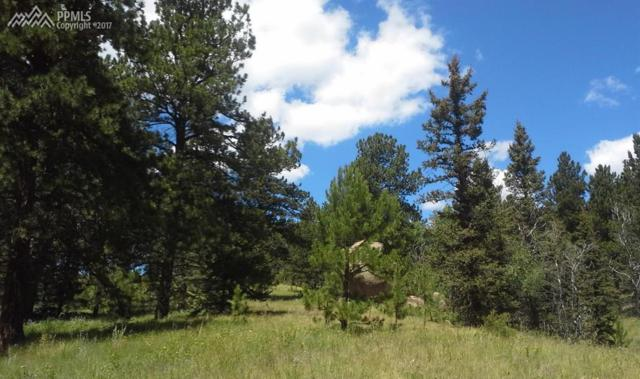 00 County 25 Road, Divide, CO 80814 (#1964560) :: 8z Real Estate
