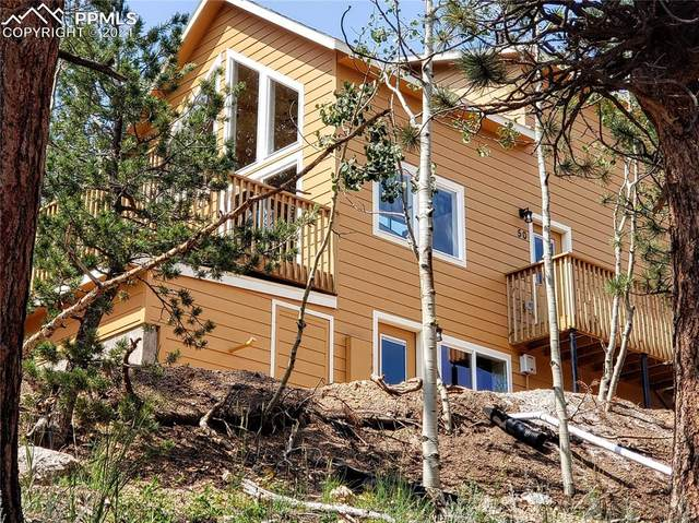 50 Joseph Road, Woodland Park, CO 80863 (#2062088) :: Tommy Daly Home Team