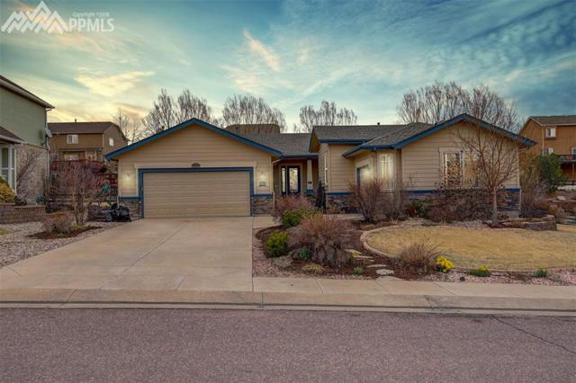15703 Agate Creek Drive, Monument, CO 80132 (#2199564) :: Fisk Team, RE/MAX Properties, Inc.