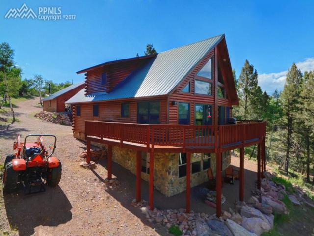 156 Panorama Drive, Florissant, CO 80816 (#2218013) :: 8z Real Estate
