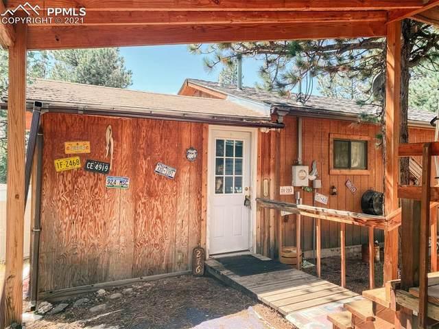 276 Blackhawk Creek Drive, Florissant, CO 80816 (#2235658) :: 8z Real Estate