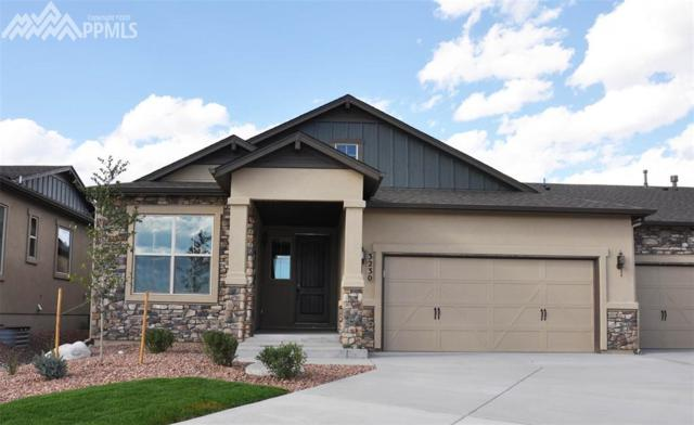 3230 Excelsior Drive, Colorado Springs, CO 80920 (#2271635) :: Jason Daniels & Associates at RE/MAX Millennium