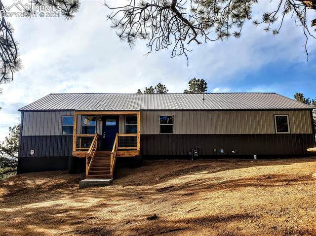 96 Cameron Circle, Florissant, CO 80816 (#2290707) :: The Treasure Davis Team | eXp Realty