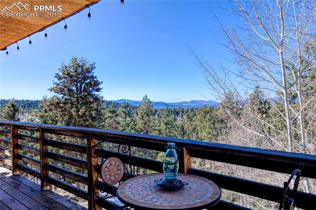 314 Shavano Creek Trail, Florissant, CO 80816 (#2310699) :: Tommy Daly Home Team