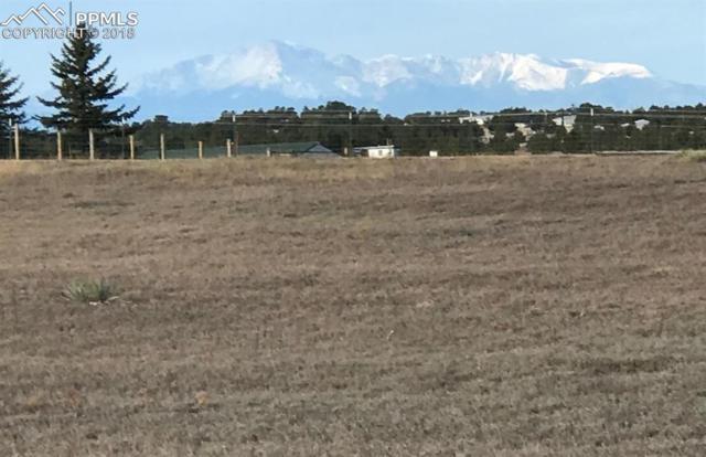 18070 Steeplechase Drive, Peyton, CO 80831 (#2333642) :: The Peak Properties Group
