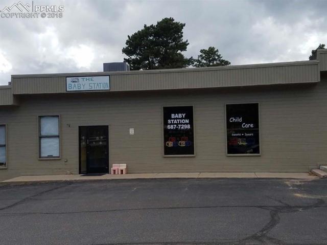 330 S Baldwin Street, Woodland Park, CO 80863 (#2424910) :: The Daniels Team
