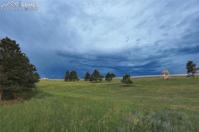 3346 Blue Heron Spring Lane, Colorado Springs, CO 80908 (#2430638) :: Fisk Team, RE/MAX Properties, Inc.