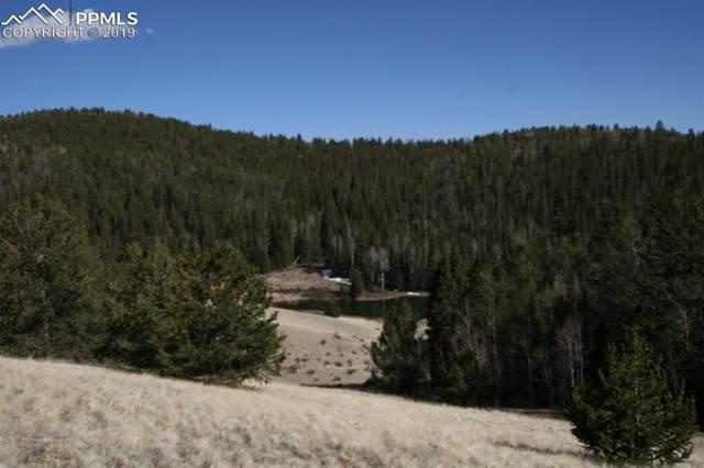 TBD County 61 Road, Cripple Creek, CO 80813 (#2507512) :: 8z Real Estate