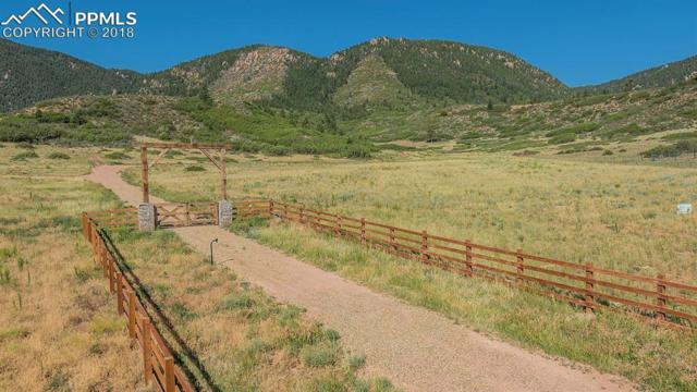 4175 Hay Creek Road, Colorado Springs, CO 80921 (#2548078) :: Harling Real Estate