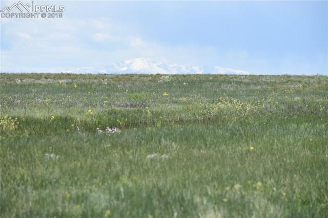 0000000 County 169 Road, Matheson, CO 80830 (#2550532) :: The Treasure Davis Team