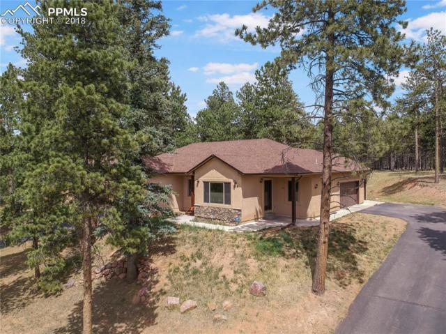 215 Wildrose Court, Woodland Park, CO 80863 (#2640174) :: 8z Real Estate