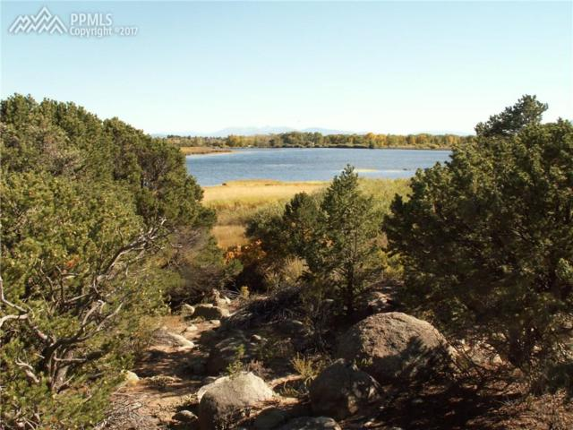 30018 Teal Road, Buena Vista, CO 81211 (#2697070) :: 8z Real Estate