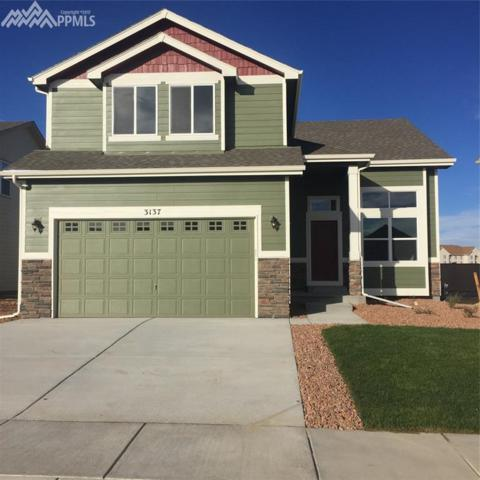 3137 Osuna Drive, Colorado Springs, CO 80916 (#2705715) :: 8z Real Estate