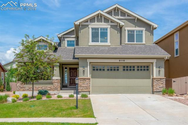 9116 Lizard Rock Trail, Colorado Springs, CO 80924 (#2770122) :: The Treasure Davis Team