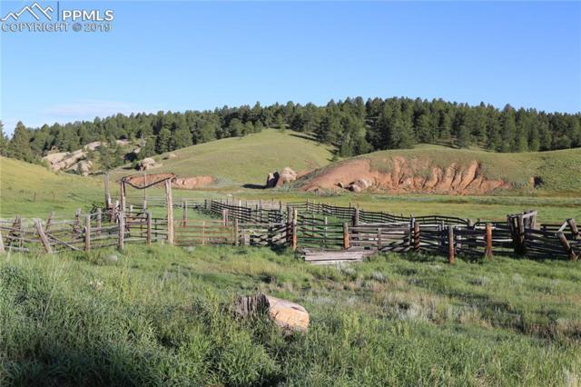 00 W Highway 24 Highway, Divide, CO 80814 (#2791729) :: Finch & Gable Real Estate Co.