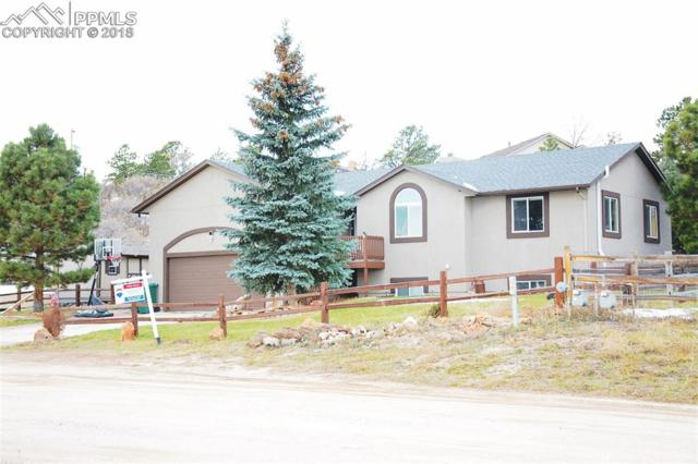 18330 Guire Way, Monument, CO 80132 (#2896672) :: The Hunstiger Team