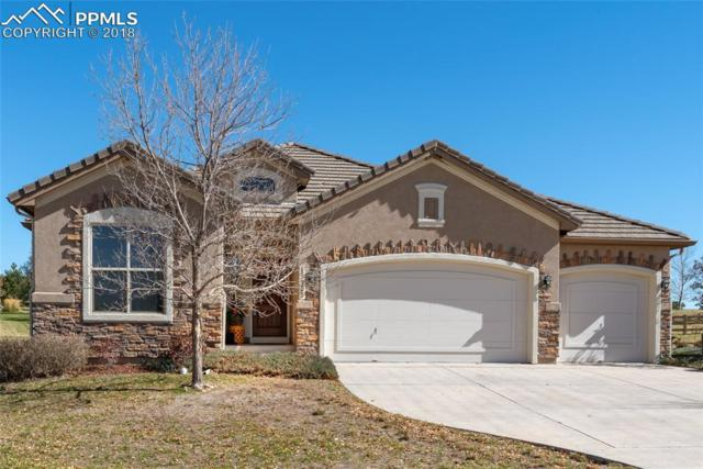 13755 Firefall Court, Colorado Springs, CO 80921 (#3107761) :: 8z Real Estate