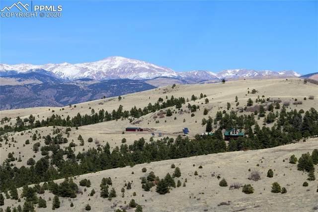 506 Sheep Springs Lane, Canon City, CO 81212 (#3139219) :: 8z Real Estate