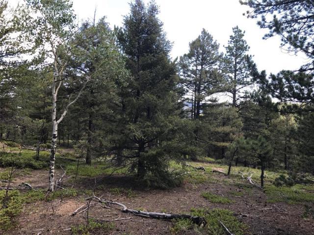 430 Tillicum Trail, Woodland Park, CO 80863 (#3165011) :: RE/MAX Advantage