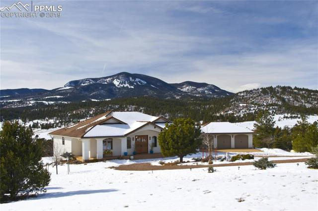 120 Rosebush Road, Canon City, CO 81212 (#3218679) :: Tommy Daly Home Team