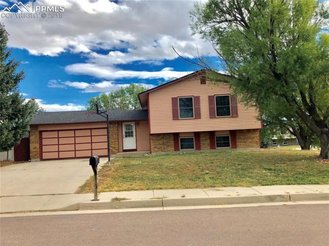 7255 Painted Rock Drive, Colorado Springs, CO 80911 (#3320103) :: Action Team Realty
