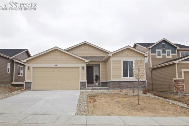 2573 Lake Of The Rockies Drive, Monument, CO 80132 (#3363003) :: The Hunstiger Team