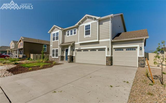 10808 Hidden Prairie Parkway, Fountain, CO 80817 (#3388266) :: 8z Real Estate