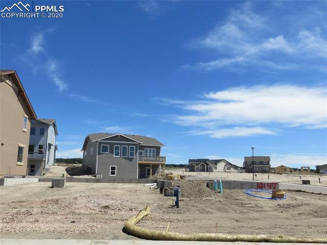 10147 Hannaway Drive, Colorado Springs, CO 80924 (#3401898) :: Tommy Daly Home Team