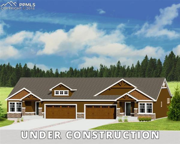 4257 Hessite Loop, Colorado Springs, CO 80938 (#3437973) :: Fisk Team, RE/MAX Properties, Inc.