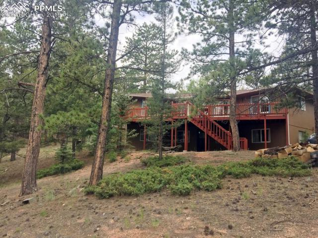 114 Chipeta Creek Trail, Florissant, CO 80816 (#3449244) :: The Kibler Group