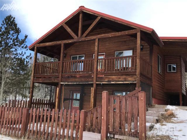 1750 Vagabond Creek Drive, Lake George, CO 80827 (#3478444) :: 8z Real Estate