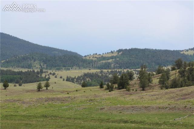 00 County 9 Highway, Guffey, CO 80820 (#3489945) :: 8z Real Estate