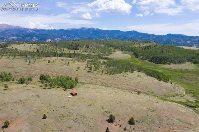 1056 County Road 863 Road, Victor, CO 80860 (#3533131) :: 8z Real Estate