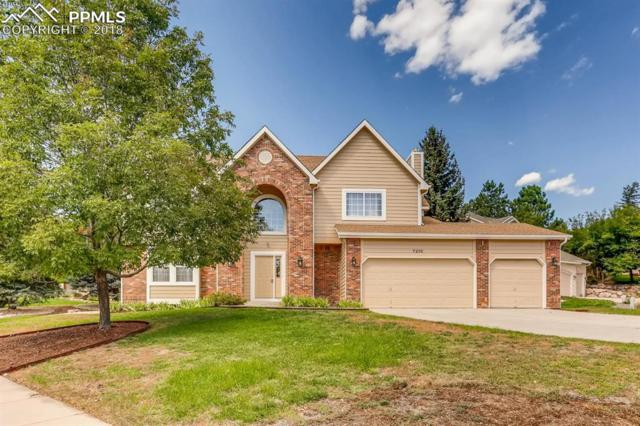 7210 Sagerock Court, Colorado Springs, CO 80919 (#3572285) :: Harling Real Estate