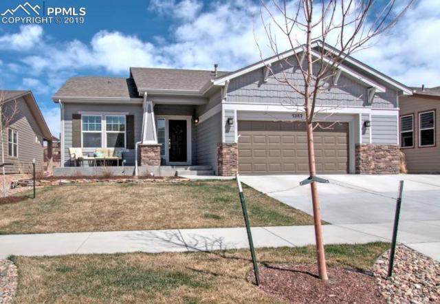 5282 Kenosha Pass Court, Colorado Springs, CO 80924 (#3609173) :: The Treasure Davis Team