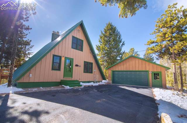 235 Ute Trail, Woodland Park, CO 80863 (#3621801) :: Perfect Properties powered by HomeTrackR