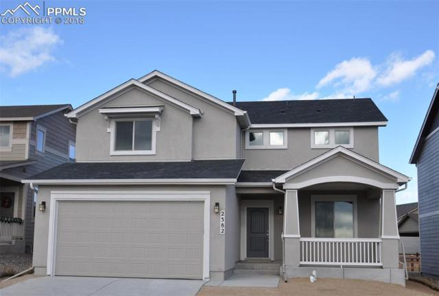 2382 Pelican Bay Drive, Monument, CO 80132 (#3719779) :: Action Team Realty