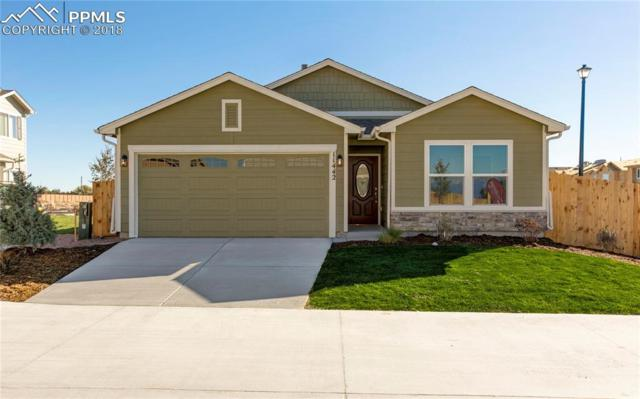 11442 Moonrock Heights, Peyton, CO 80831 (#3785191) :: 8z Real Estate