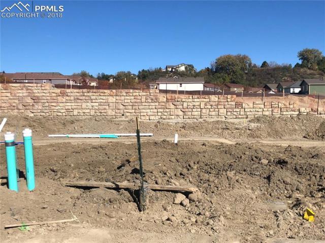 2114 Birmingham Loop, Colorado Springs, CO 80906 (#3788331) :: Venterra Real Estate LLC