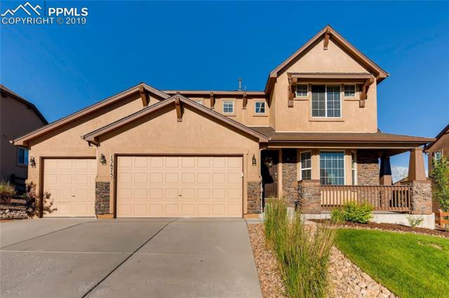 15675 Transcontinental Drive, Monument, CO 80132 (#3866248) :: Fisk Team, RE/MAX Properties, Inc.