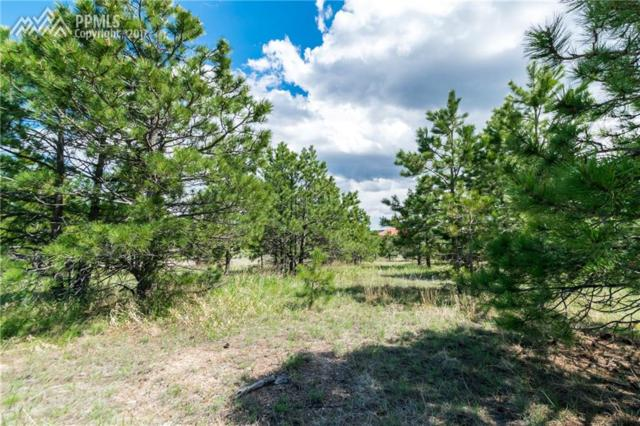 1605 Trumpeters Court, Monument, CO 80132 (#3883630) :: 8z Real Estate