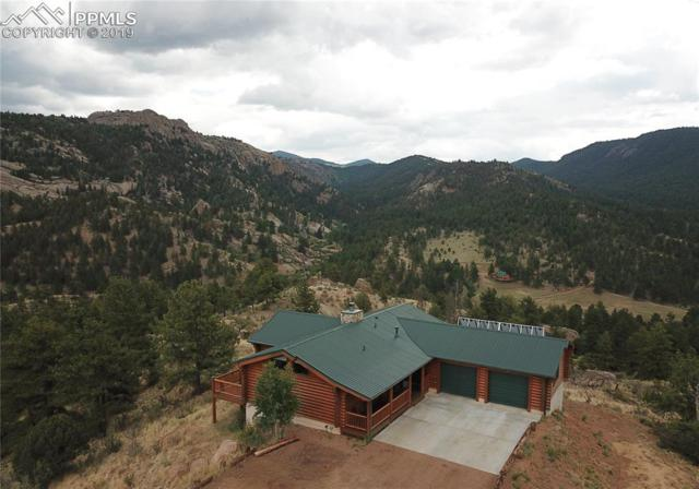 600 Navajo Trail, Florissant, CO 80816 (#3927194) :: The Treasure Davis Team