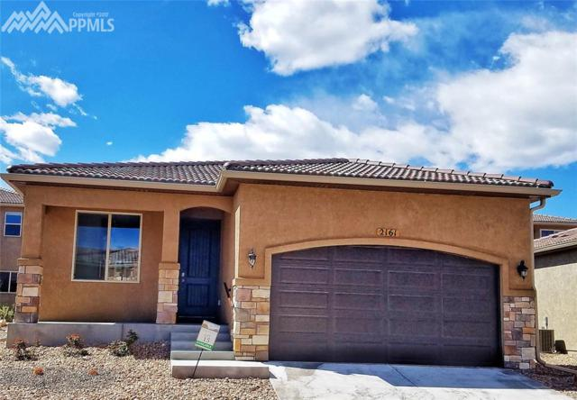 2161 Lost Quail Point, Colorado Springs, CO 80904 (#3938590) :: 8z Real Estate