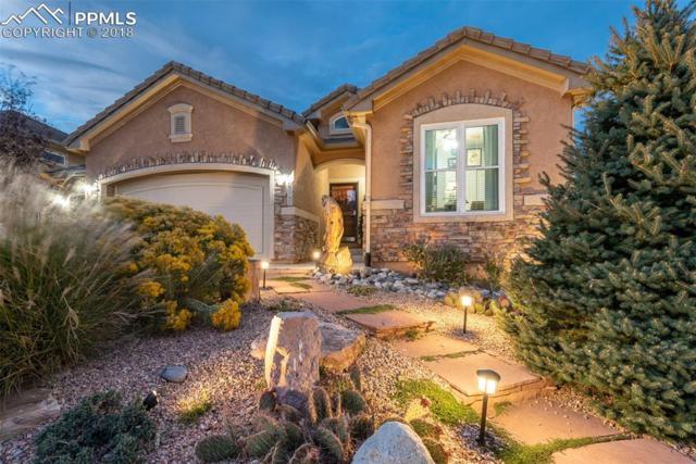 2508 Sierra Oak Drive, Colorado Springs, CO 80919 (#3958329) :: 8z Real Estate