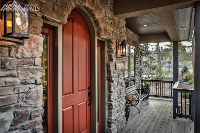 920 Spacious Skies Drive, Woodland Park, CO 80863 (#3965295) :: 8z Real Estate
