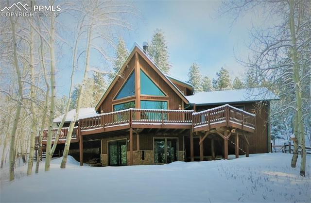 10095 Canyon Terrace, Woodland Park, CO 80863 (#3998859) :: Fisk Team, RE/MAX Properties, Inc.