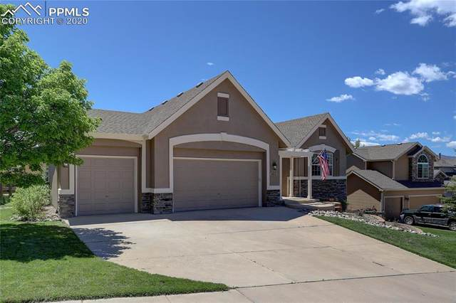 461 Saber Creek Drive, Monument, CO 80132 (#4100113) :: Finch & Gable Real Estate Co.