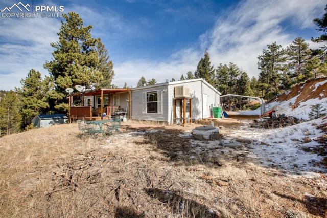 242 Bear Mountain Road, Florissant, CO 80816 (#4104985) :: 8z Real Estate