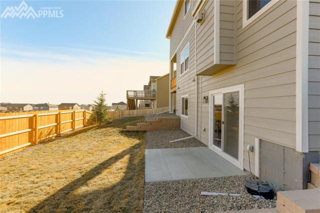 7059 Thorn Brush Way, Colorado Springs, CO 80923 (#4107644) :: 8z Real Estate